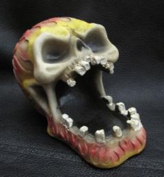 пепелник череп 10