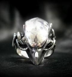 пръстен хищник 014